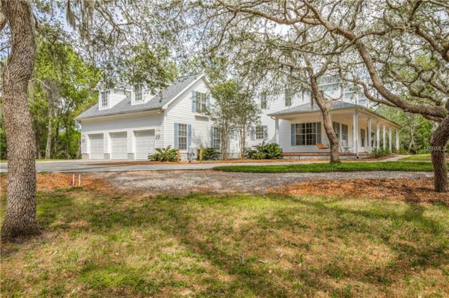 695 Old East Lake Road, Tarpon Springs, FL 34688 (MLS #U8004166) :: Team Pepka