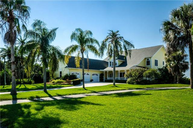 363 Oceanview Avenue, Palm Harbor, FL 34683 (MLS #U8004299) :: Jeff Borham & Associates at Keller Williams Realty