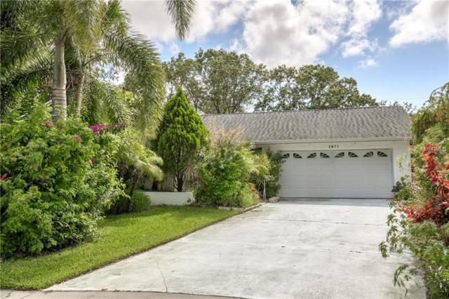2871 Thistle Court N, Palm Harbor, FL 34684 (MLS #U8004389) :: Jeff Borham & Associates at Keller Williams Realty