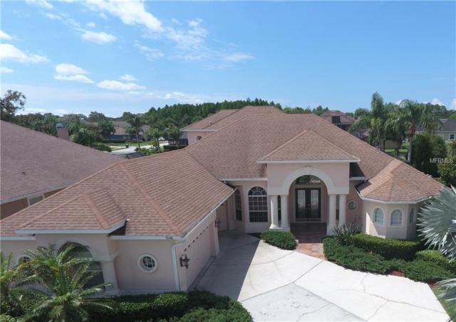15416 Wind Whisper Drive, Odessa, FL 33556 (MLS #U8004562) :: Baird Realty Group