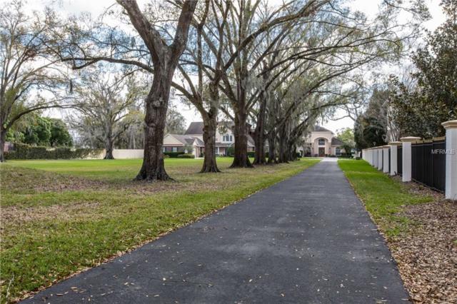 3210 Ehrlich Road, Tampa, FL 33618 (MLS #U8004598) :: Delgado Home Team at Keller Williams