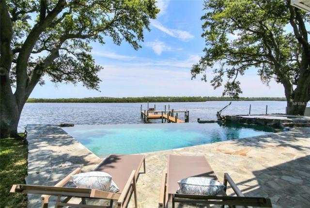 127 Carlyle Circle, Palm Harbor, FL 34683 (MLS #U8004636) :: Premium Properties Real Estate Services