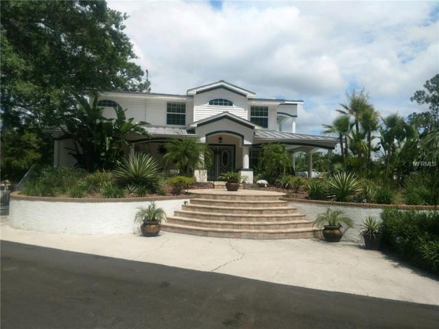 2648 Grand Boulevard, Holiday, FL 34690 (MLS #U8004679) :: Team Pepka