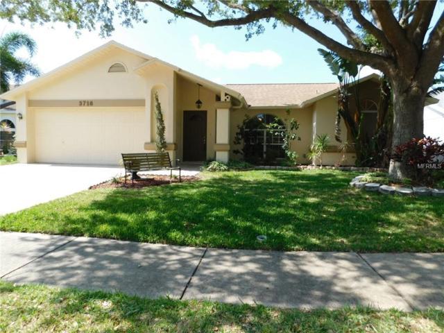 3716 Lake Boulevard, Clearwater, FL 33762 (MLS #U8004830) :: Jeff Borham & Associates at Keller Williams Realty