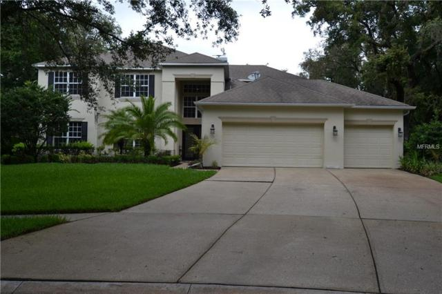 43 Camelot Ridge Drive, Brandon, FL 33511 (MLS #U8004926) :: The Duncan Duo Team