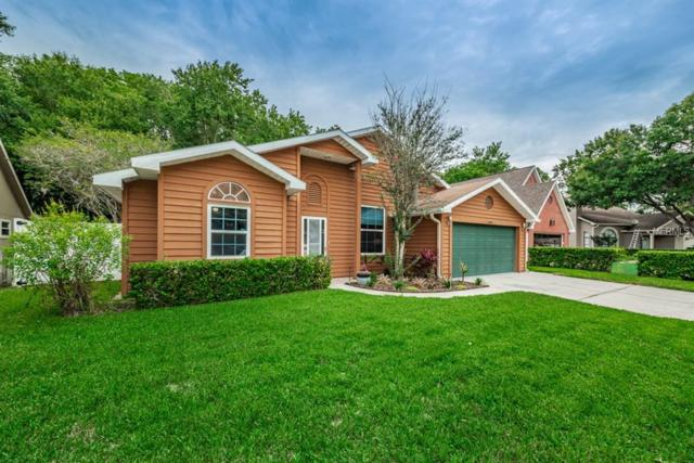7107 Otter Creek Drive, New Port Richey, FL 34655 (MLS #U8004952) :: O'Connor Homes