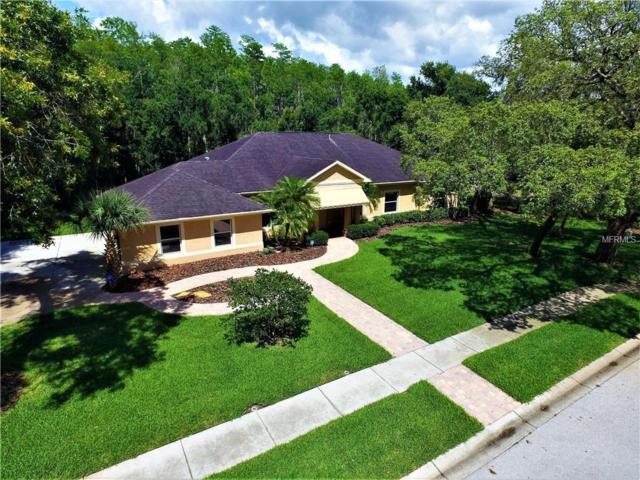6001 Riviera Lane, New Port Richey, FL 34655 (MLS #U8005033) :: Jeff Borham & Associates at Keller Williams Realty