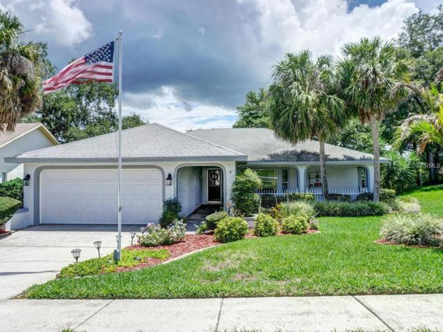 1701 Highland Club Lane, Palm Harbor, FL 34684 (MLS #U8005069) :: Delgado Home Team at Keller Williams