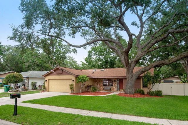 1363 Homestead Way, Palm Harbor, FL 34683 (MLS #U8005072) :: Delgado Home Team at Keller Williams