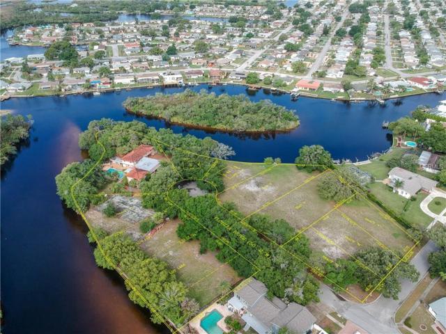 FLOTILLA & Melaleuca Drive, Holiday, FL 34690 (MLS #U8005252) :: Jeff Borham & Associates at Keller Williams Realty