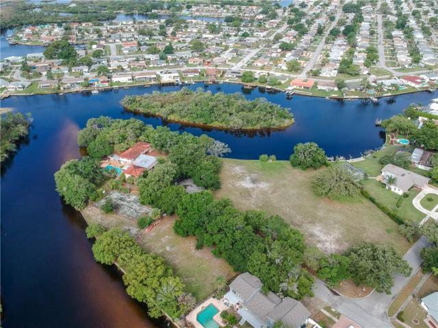 FLOTILLA & Melaleuca Drive, Holiday, FL 34690 (MLS #U8005262) :: Jeff Borham & Associates at Keller Williams Realty