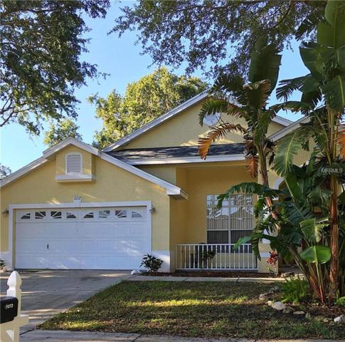1072 Mainsail Drive, Tarpon Springs, FL 34689 (MLS #U8005272) :: Jeff Borham & Associates at Keller Williams Realty