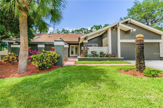 1321 Indian Trail N, Palm Harbor, FL 34683 (MLS #U8005381) :: Jeff Borham & Associates at Keller Williams Realty