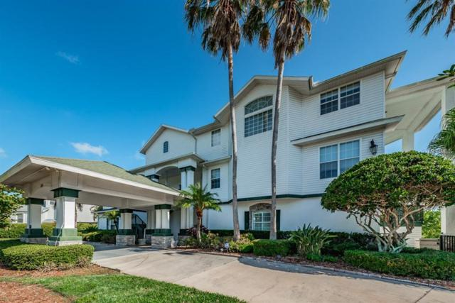 125 Sanctuary Drive, Crystal Beach, FL 34681 (MLS #U8005419) :: Chenault Group