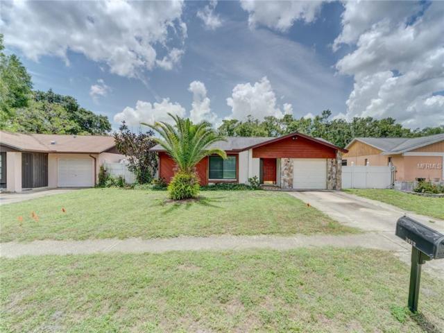 3012 Cypress Green Drive, Palm Harbor, FL 34684 (MLS #U8005532) :: Burwell Real Estate