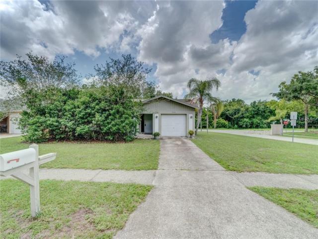 3000 Cypress Green Drive, Palm Harbor, FL 34684 (MLS #U8005534) :: Burwell Real Estate