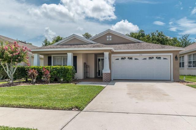 2501 Maylin Drive, Trinity, FL 34655 (MLS #U8005783) :: NewHomePrograms.com LLC