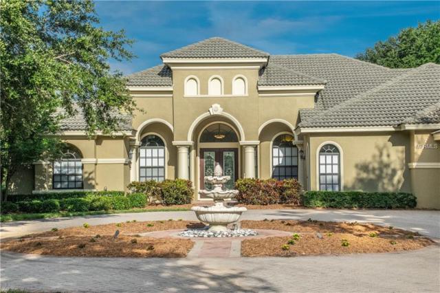 1365 Playmoor Drive, Palm Harbor, FL 34683 (MLS #U8005823) :: The Light Team