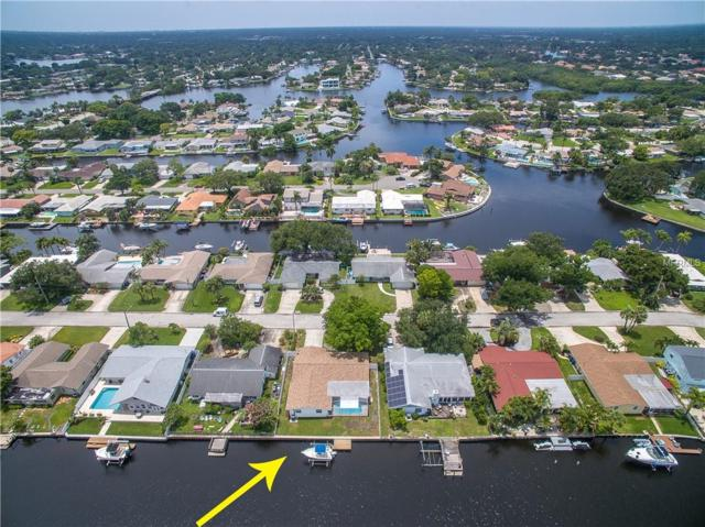 4231 14TH Street NE, St Petersburg, FL 33703 (MLS #U8006190) :: The Lockhart Team