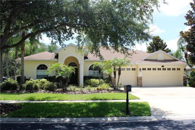 16502 Botancia Place, Lutz, FL 33558 (MLS #U8007348) :: The Duncan Duo Team