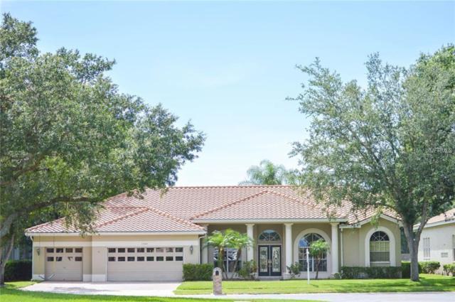 1084 Berkshire Lane, Tarpon Springs, FL 34688 (MLS #U8007465) :: Chenault Group