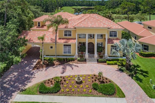 5290 Enclave Drive, Oldsmar, FL 34677 (MLS #U8007504) :: O'Connor Homes
