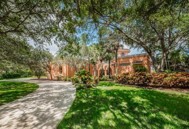 7462 Water Silk Drive N, Pinellas Park, FL 33782 (MLS #U8007613) :: The Signature Homes of Campbell-Plummer & Merritt
