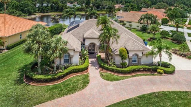 4432 Roanoak Way, Palm Harbor, FL 34685 (MLS #U8007714) :: O'Connor Homes