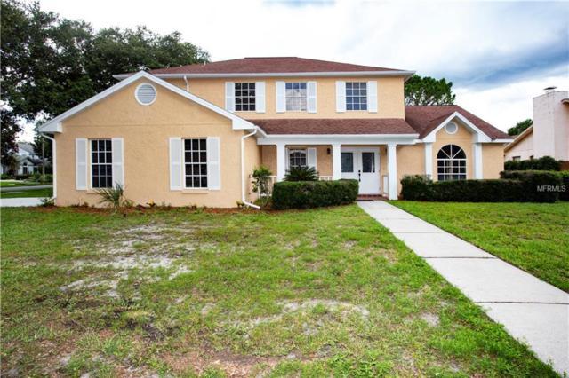 4213 Elba Place, Valrico, FL 33596 (MLS #U8007788) :: Griffin Group