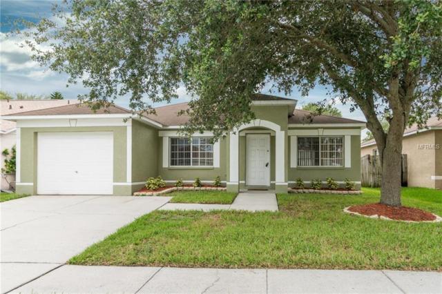 1257 Franford Drive, Brandon, FL 33511 (MLS #U8008321) :: Griffin Group