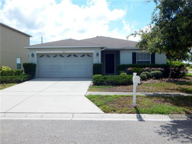 5026 Ballard Crest Lane, Wesley Chapel, FL 33543 (MLS #U8008374) :: The Duncan Duo Team