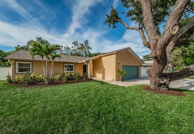 1387 Wexford Drive S, Palm Harbor, FL 34683 (MLS #U8008478) :: Burwell Real Estate
