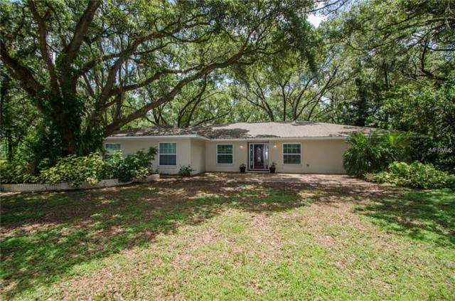 16545 Hanna Road, Lutz, FL 33549 (MLS #U8008544) :: Revolution Real Estate