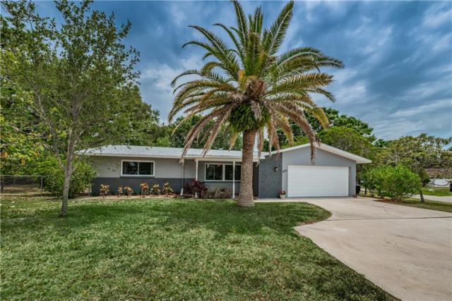 1271 Michigan Boulevard, Dunedin, FL 34698 (MLS #U8008557) :: Chenault Group