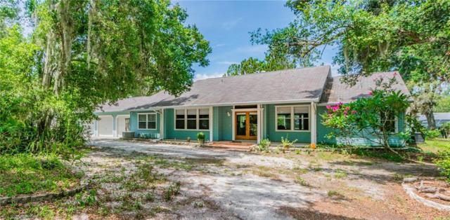 275 Omaha Street, Palm Harbor, FL 34683 (MLS #U8008622) :: Chenault Group
