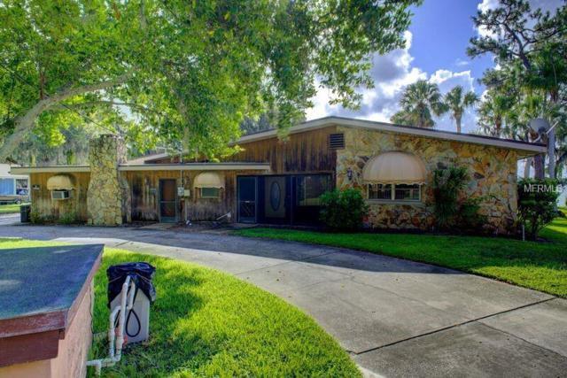 301 Lakeview Drive, Tarpon Springs, FL 34689 (MLS #U8008819) :: Chenault Group