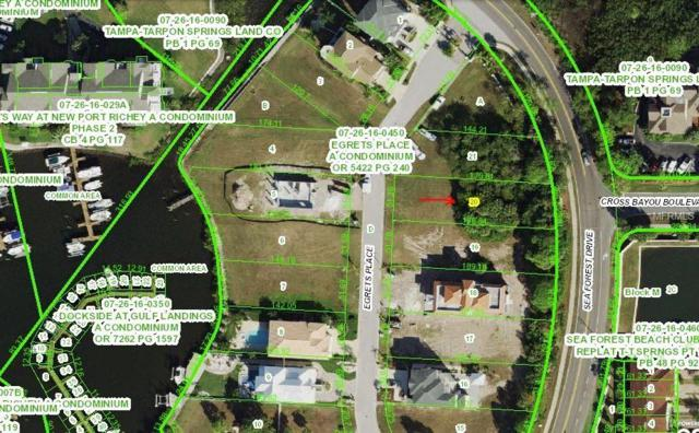 5650 Egrets Place, New Port Richey, FL 34652 (MLS #U8008820) :: Mark and Joni Coulter | Better Homes and Gardens