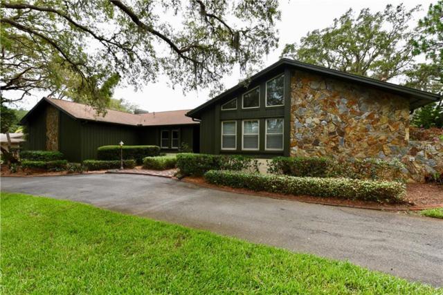 30 Eagle Lane, Palm Harbor, FL 34683 (MLS #U8008835) :: Chenault Group