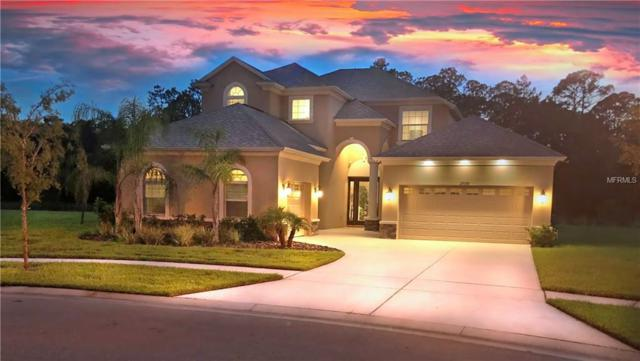 27170 Hawks Nest Circle, Wesley Chapel, FL 33544 (MLS #U8009362) :: The Duncan Duo Team