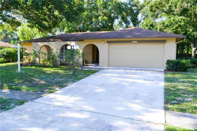 2519 Winding Wood Drive, Clearwater, FL 33761 (MLS #U8009866) :: Lock and Key Team