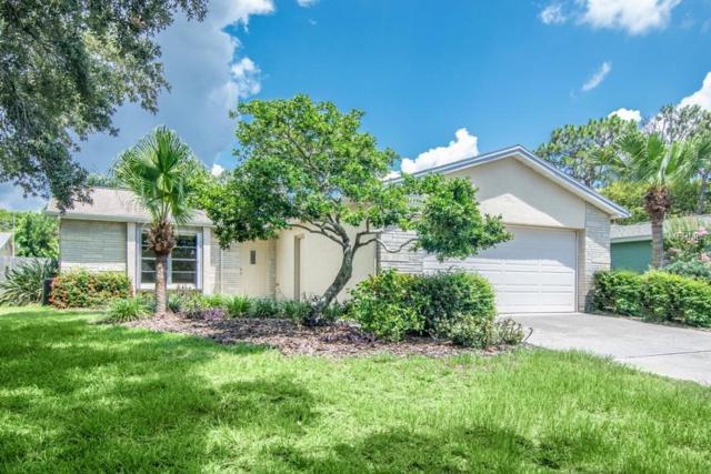 3273 Pine Haven Drive, Clearwater, FL 33761 (MLS #U8009936) :: Lock and Key Team