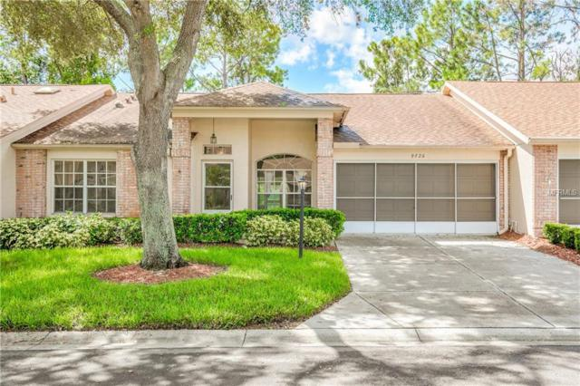 9726 Sweeping View Drive, New Port Richey, FL 34655 (MLS #U8009975) :: The Duncan Duo Team
