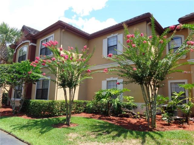 2220 Chianti Place 8-0811, Palm Harbor, FL 34683 (MLS #U8010108) :: The Duncan Duo Team