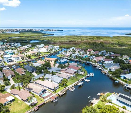 6229 Spoonbill Drive, New Port Richey, FL 34652 (MLS #U8010821) :: Mark and Joni Coulter | Better Homes and Gardens