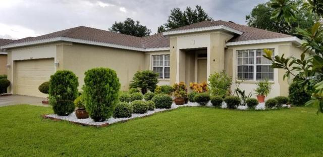 11322 Bridge Pine Drive, Riverview, FL 33569 (MLS #U8010826) :: The Duncan Duo Team