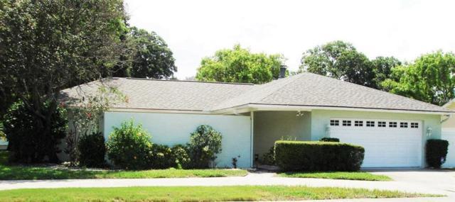 156 Hammock Drive, Palm Harbor, FL 34683 (MLS #U8010897) :: Delgado Home Team at Keller Williams