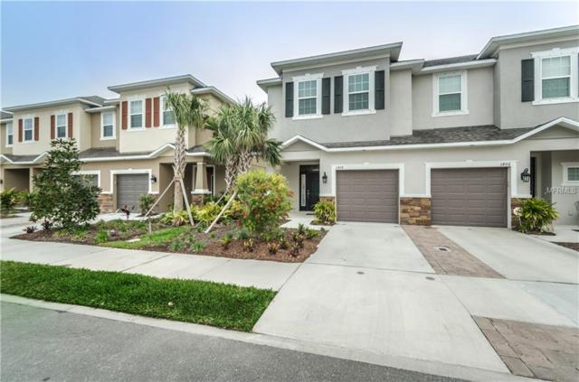 1408 Syrah Drive, Oldsmar, FL 34677 (MLS #U8010975) :: Griffin Group