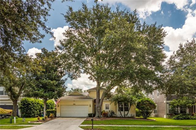 4145 Grandchamp Circle, Palm Harbor, FL 34685 (MLS #U8010986) :: Delgado Home Team at Keller Williams