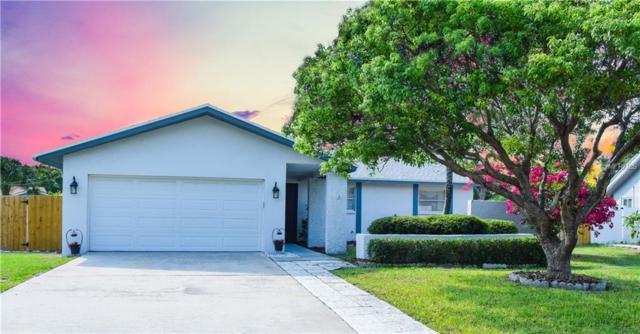 1157 Brook Drive E, Dunedin, FL 34698 (MLS #U8011034) :: Dalton Wade Real Estate Group