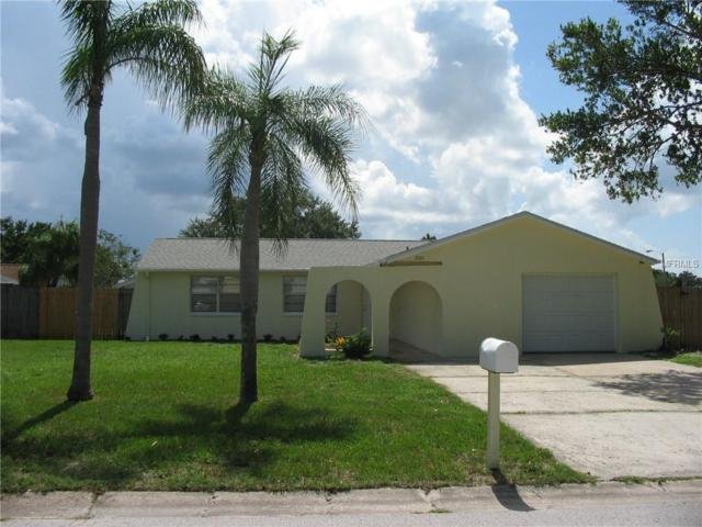 3101 Birch Court, Dunedin, FL 34698 (MLS #U8011041) :: Dalton Wade Real Estate Group